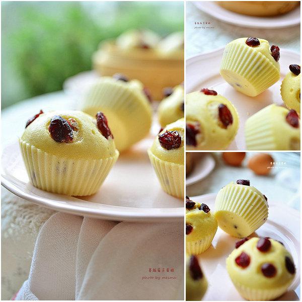蔓越莓蒸蛋糕的做法[爱美的家]
